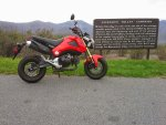 Grom at Browns Gap.jpg